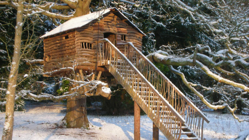 Plas Newydd Winter Treehouse Web